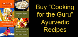 Cooking For The Guru Cookbook